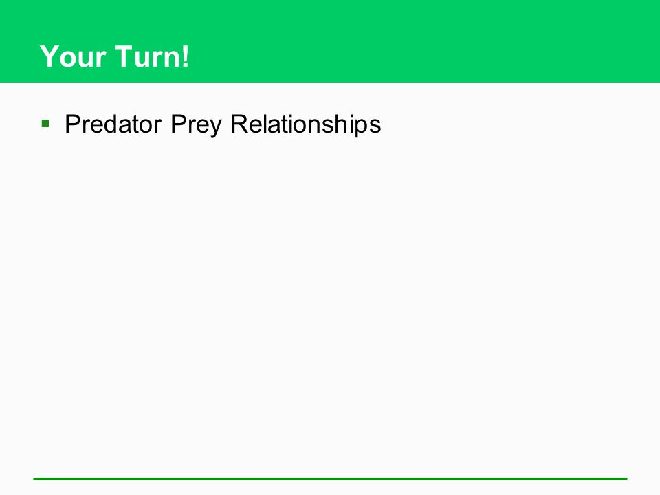 Your Turn!  Predator Prey Relationships