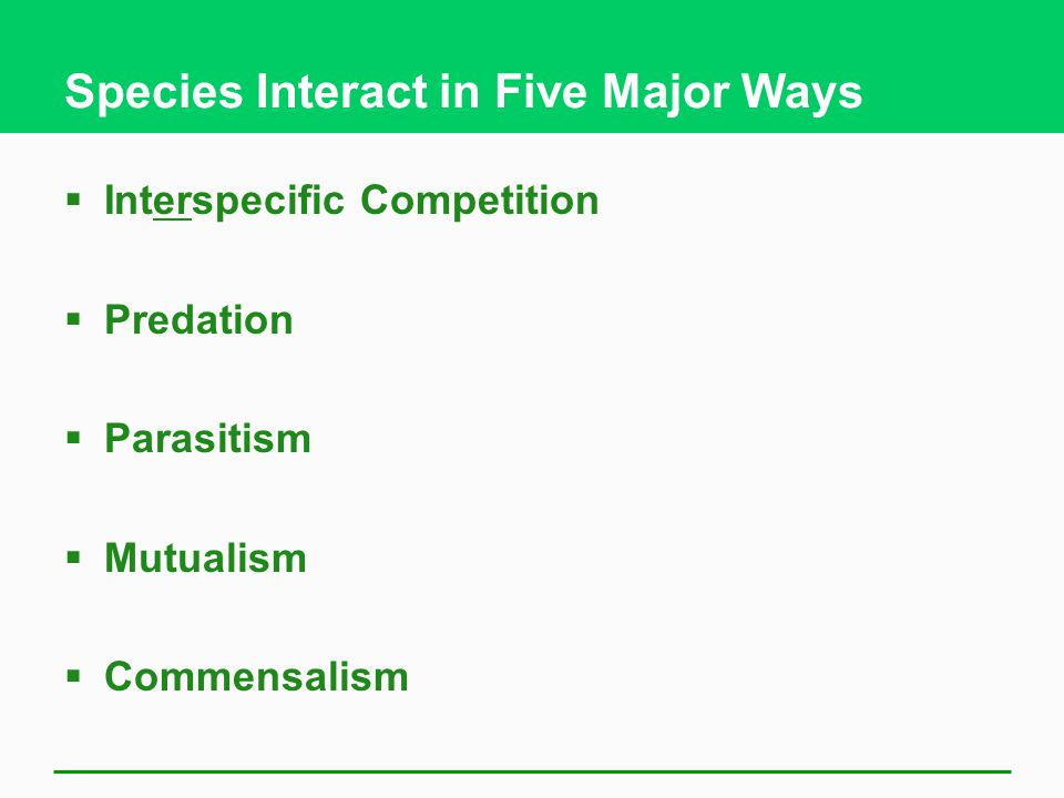 Species Interact in Five Major Ways  Interspecific Competition  Predation  Parasitism  Mutualism  Commensalism