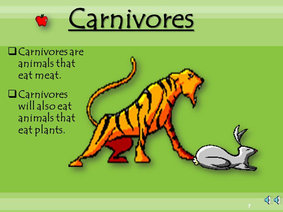 Herbivores  Herbivores are animals that only eat plants plants. 6