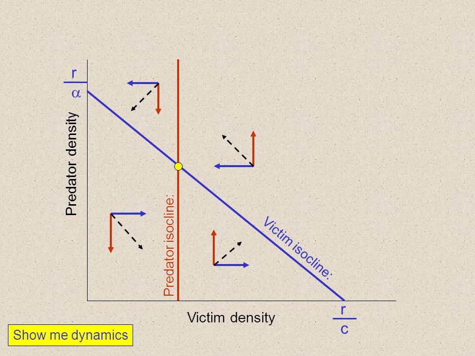 Victim density Predator density Predator isocline: Victim isocline: rr rcrc Show me dynamics