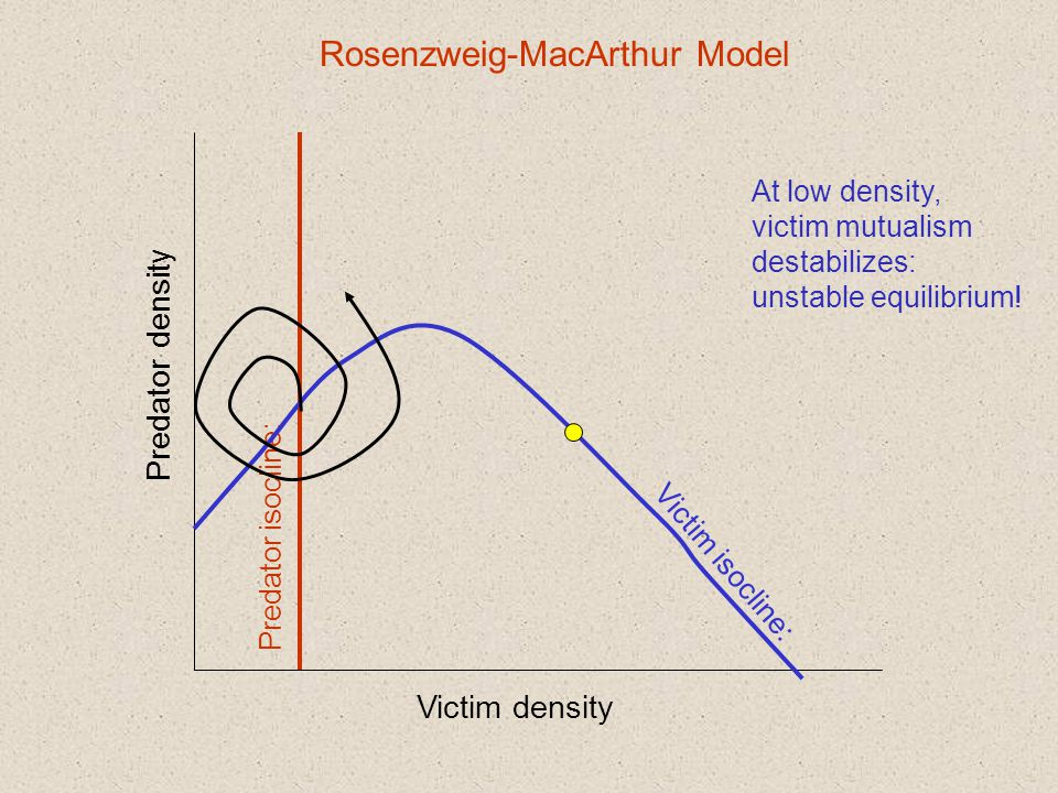 Victim density Predator density Predator isocline: Victim isocline: Rosenzweig-MacArthur Model At low density, victim mutualism destabilizes: unstable equilibrium!
