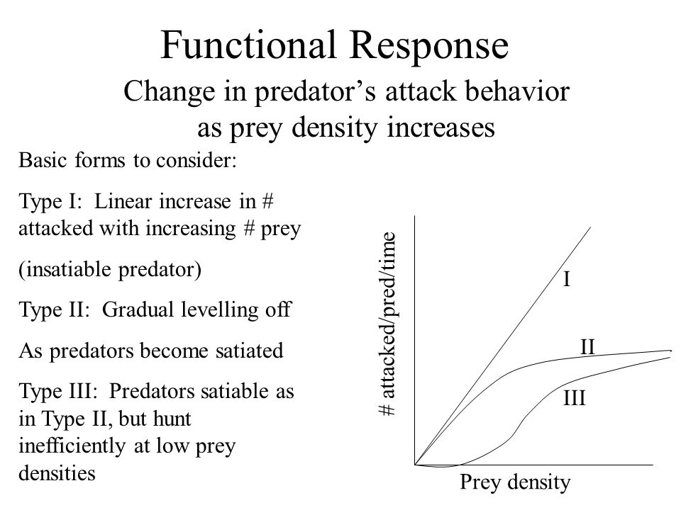 Functional Response Change in predator's attack behavior as prey density increases Basic forms to consider: Type I: Linear increase in # attacked with