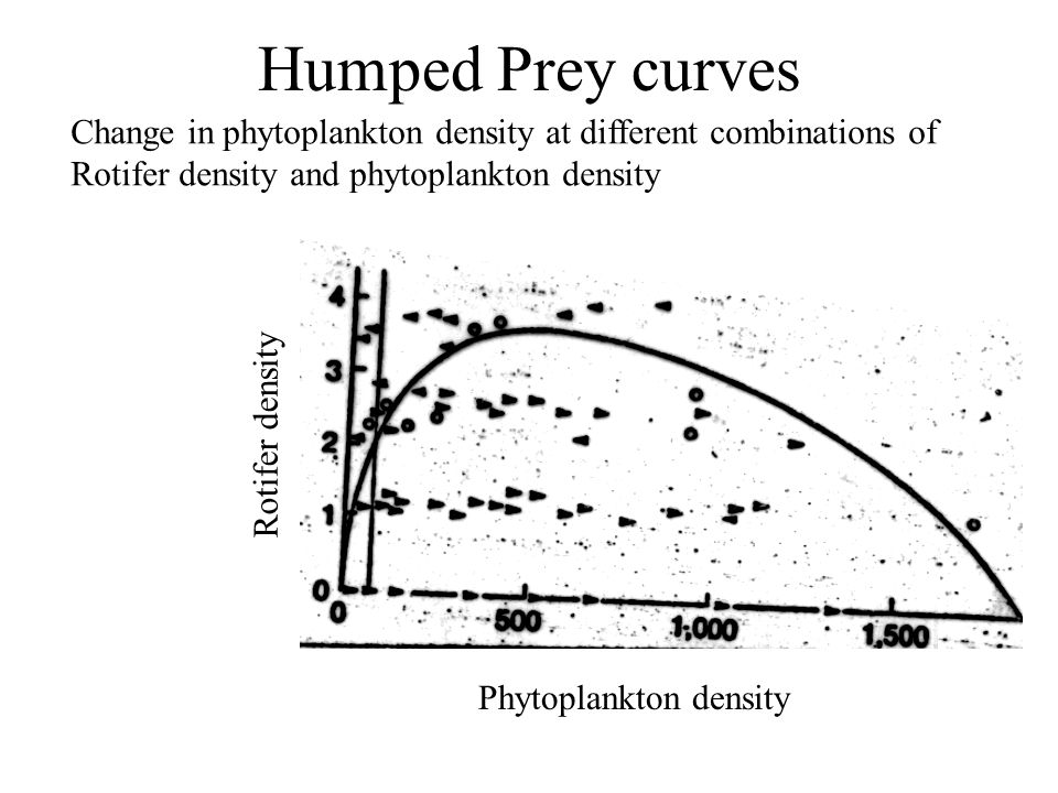 Humped Prey curves Rotifer density Phytoplankton density Change in phytoplankton density at different combinations of Rotifer density and phytoplankton density