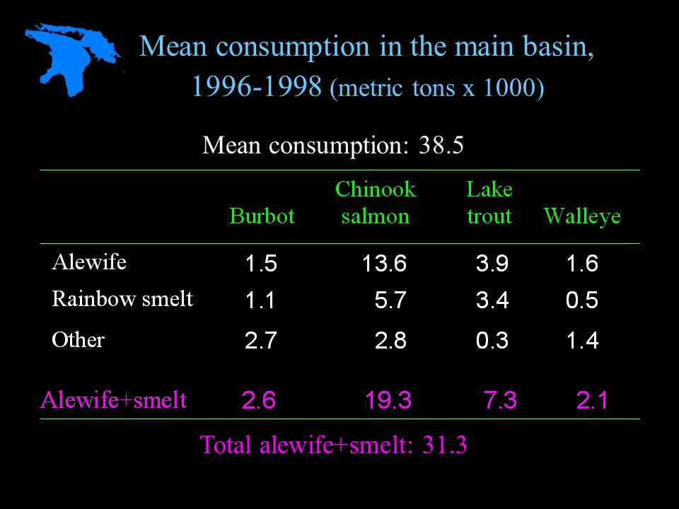 Mean consumption in the main basin, 1996-1998 (metric tons x 1000) Mean consumption: 38.5 Total alewife+smelt: 31.3