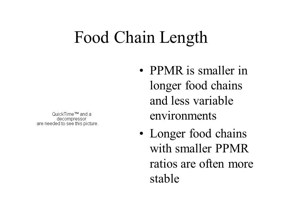 Food Chain Length PPMR is smaller in longer food chains and less variable environments Longer food chains with smaller PPMR ratios are often more stab