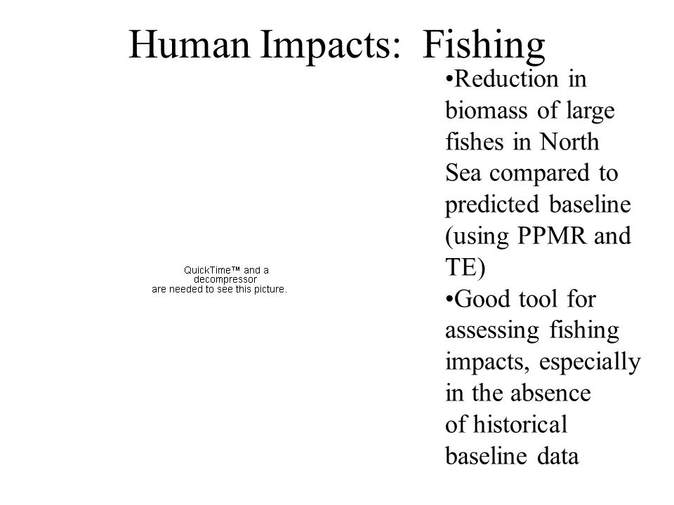 Human Impacts: Fishing Reduction in biomass of large fishes in North Sea compared to predicted baseline (using PPMR and TE) Good tool for assessing fi