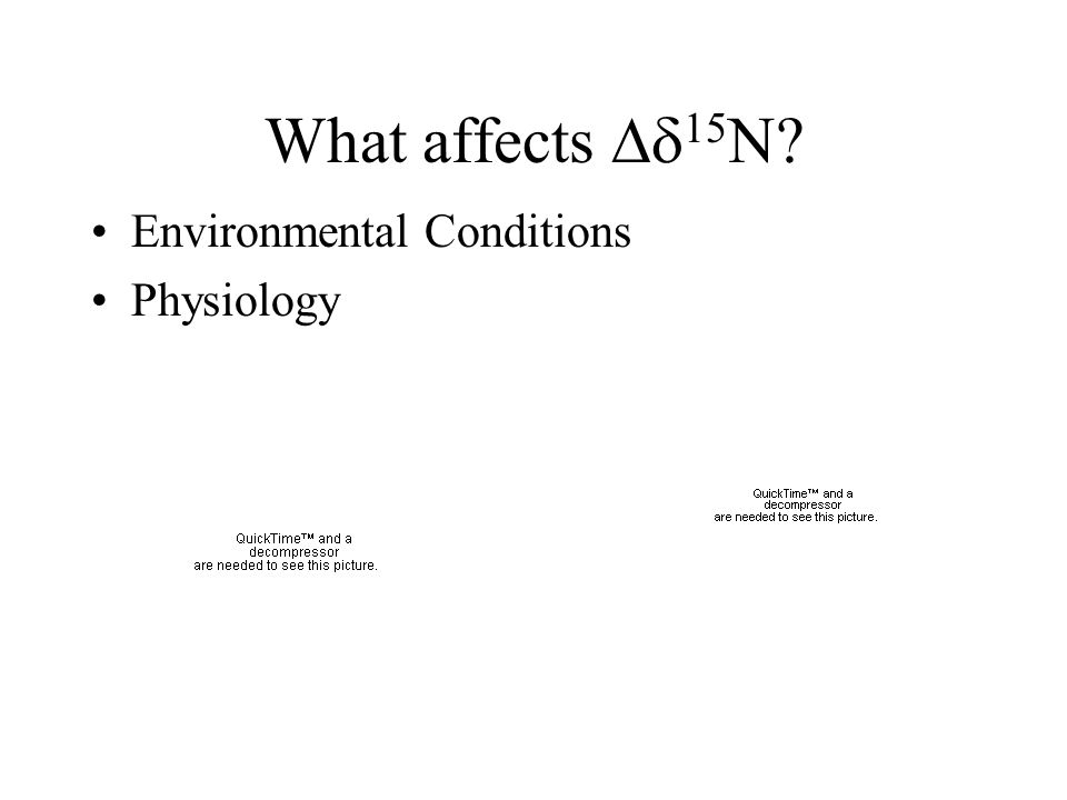What affects  15 N? Environmental Conditions Physiology
