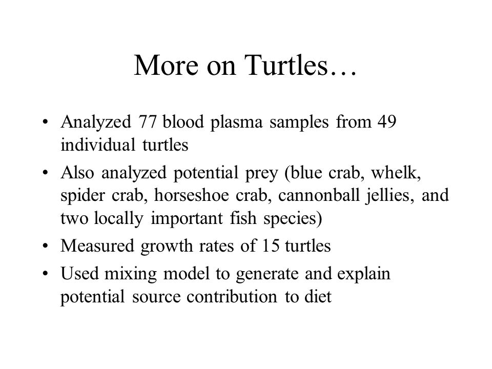 More on Turtles… Analyzed 77 blood plasma samples from 49 individual turtles Also analyzed potential prey (blue crab, whelk, spider crab, horseshoe cr