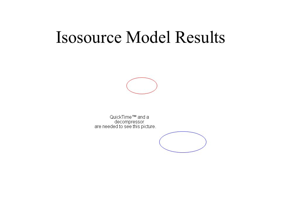 Isosource Model Results