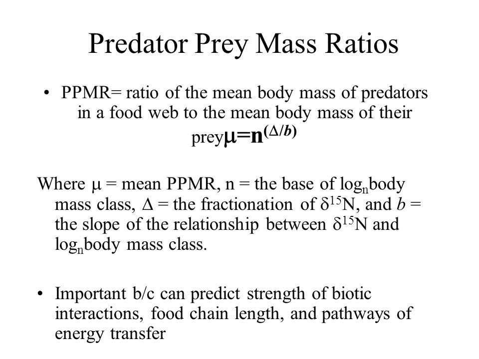 Predator Prey Mass Ratios PPMR= ratio of the mean body mass of predators in a food web to the mean body mass of their prey  =n (  /b) Where  = mean