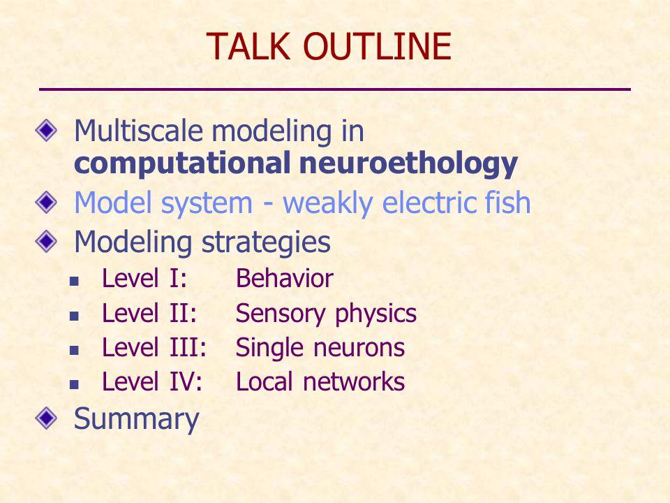 Multiscale Organization of the Nervous System Organism Brain/CNS Networks Neurons Synapses Molecules Brain maps 1 m 10 cm 1 mm 100  m 1  m 1 Å 1 cm Churchland & Sejnowski 1988Delcomyn 1998