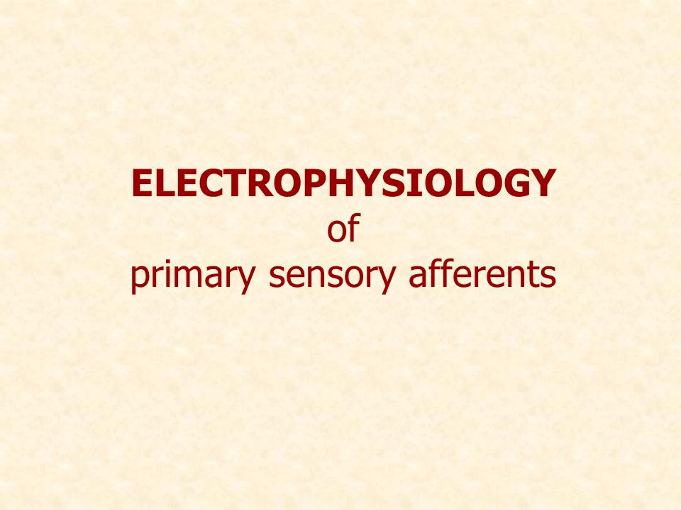 ELECTROPHYSIOLOGY of primary sensory afferents