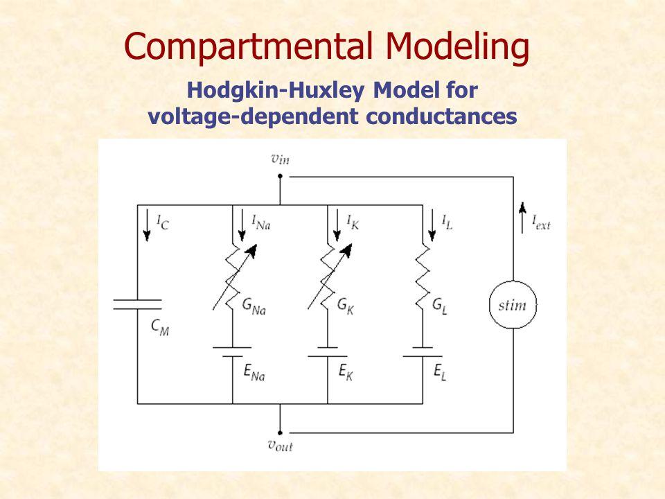 Hodgkin-Huxley Model for voltage-dependent conductances