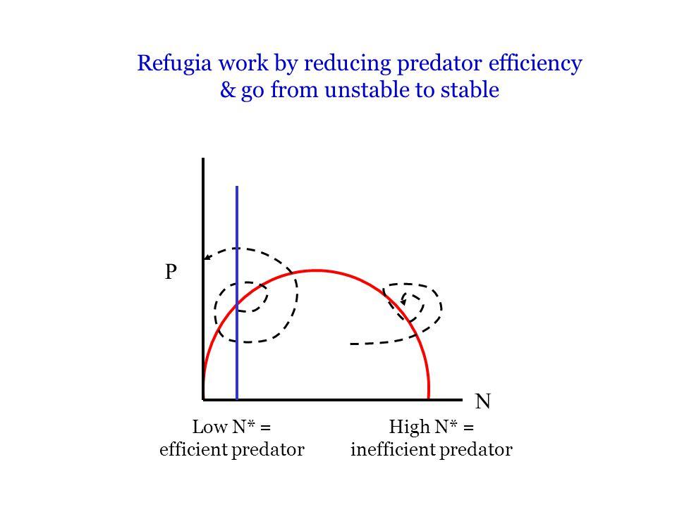 P N Refugia work by reducing predator efficiency & go from unstable to stable Low N* = efficient predator High N* = inefficient predator