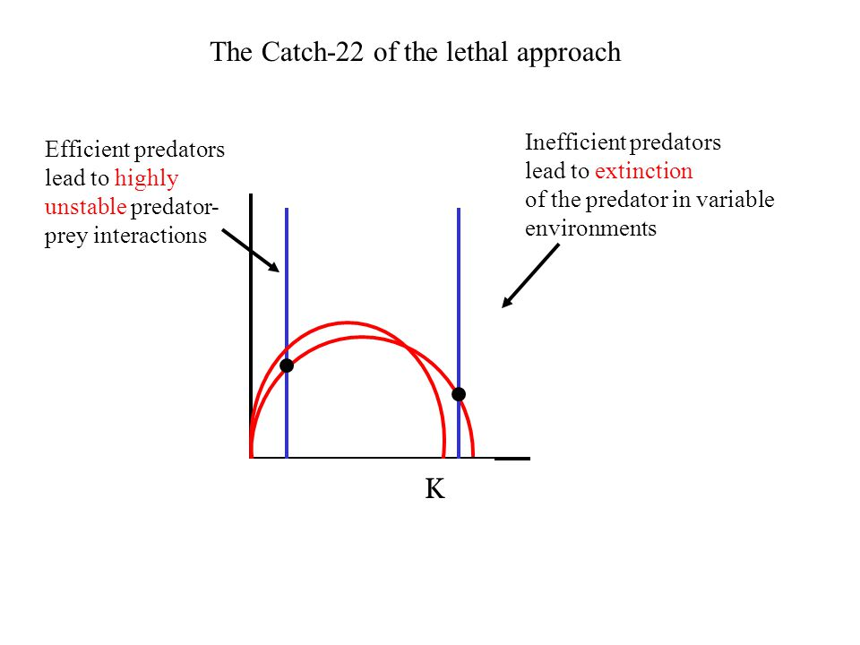 K The Catch-22 of the lethal approach Efficient predators lead to highly unstable predator- prey interactions Inefficient predators lead to extinction