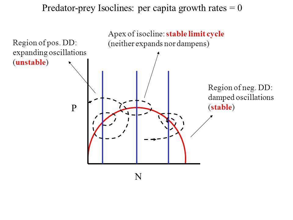 Predator-prey Isoclines: per capita growth rates = 0 P N Region of neg. DD: damped oscillations (stable) Region of pos. DD: expanding oscillations (un