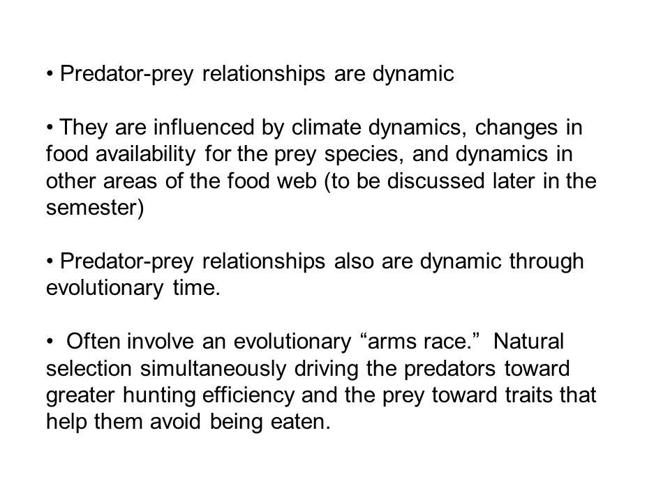 Predator-prey relationships are dynamic They are influenced by climate dynamics, changes in food availability for the prey species, and dynamics in other areas of the food web (to be discussed later in the semester) Predator-prey relationships also are dynamic through evolutionary time.