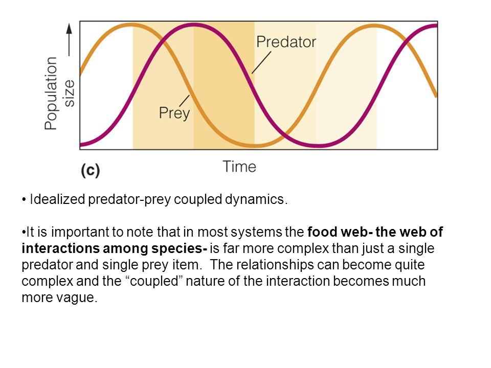 Idealized predator-prey coupled dynamics.