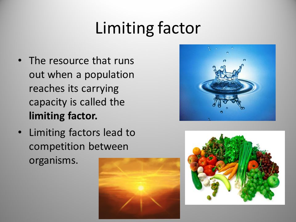 Limiting factor The resource that runs out when a population reaches its carrying capacity is called the limiting factor.