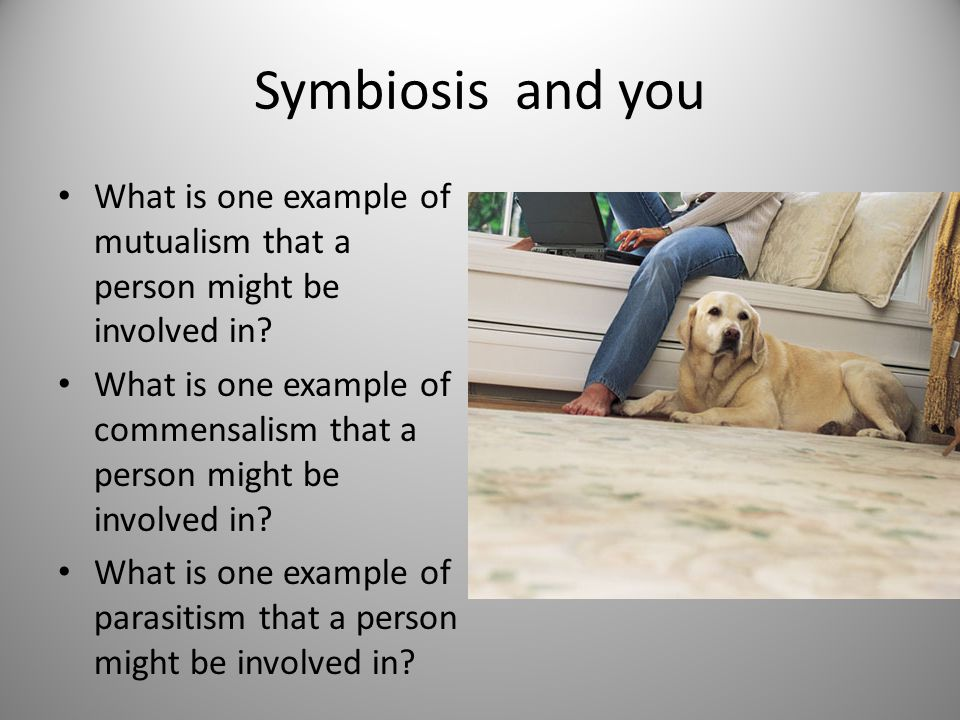 Symbiosis and you What is one example of mutualism that a person might be involved in.