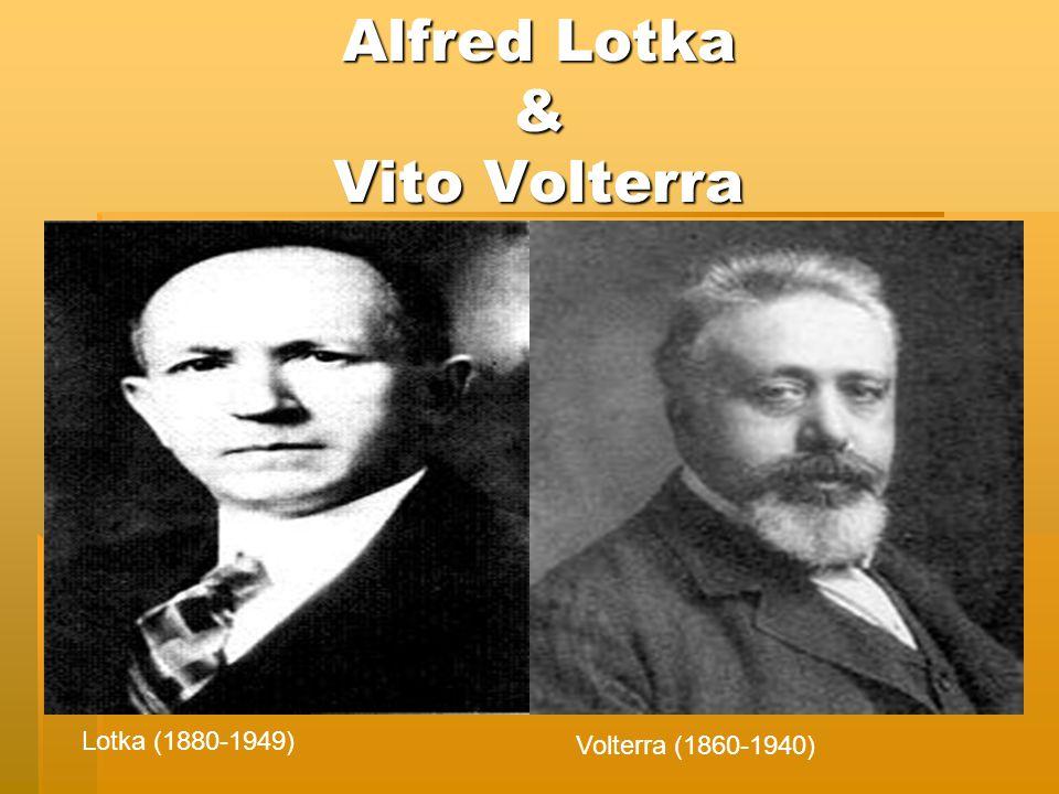 Alfred Lotka & Vito Volterra Lotka (1880-1949) Volterra (1860-1940)