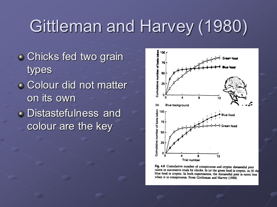 Gittleman and Harvey (1980) Chicks fed two grain types Colour did not matter on its own Distastefulness and colour are the key