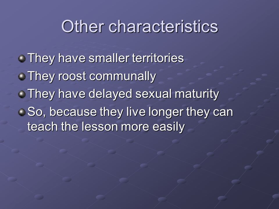 Other characteristics They have smaller territories They roost communally They have delayed sexual maturity So, because they live longer they can teach the lesson more easily