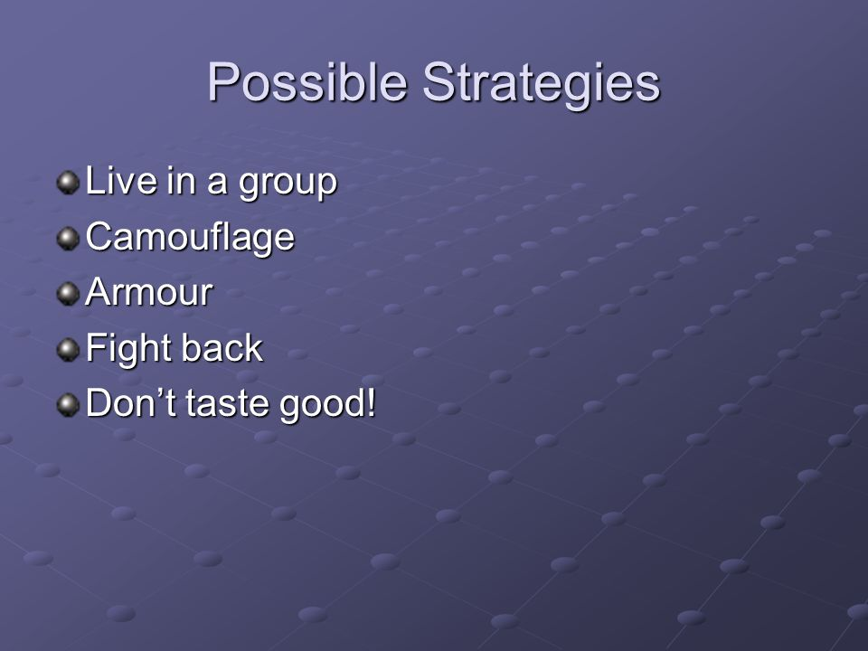 Possible Strategies Live in a group CamouflageArmour Fight back Don't taste good!