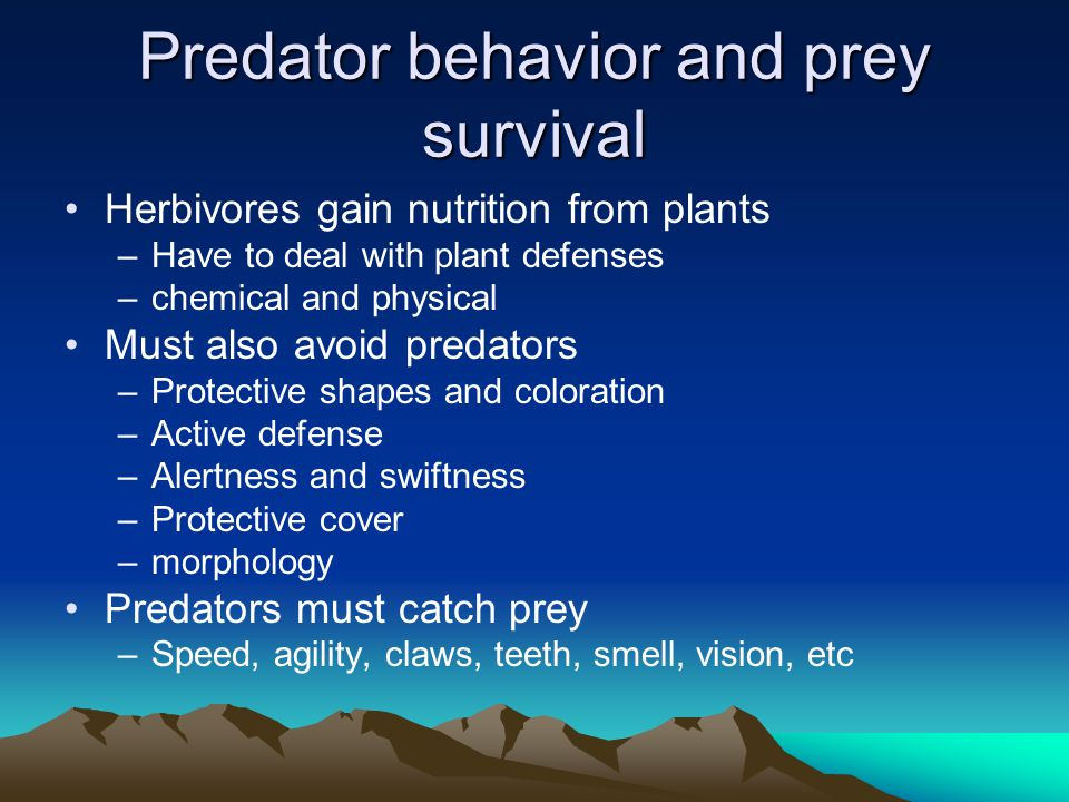 Predator behavior and prey survival Herbivores gain nutrition from plants –Have to deal with plant defenses –chemical and physical Must also avoid pre
