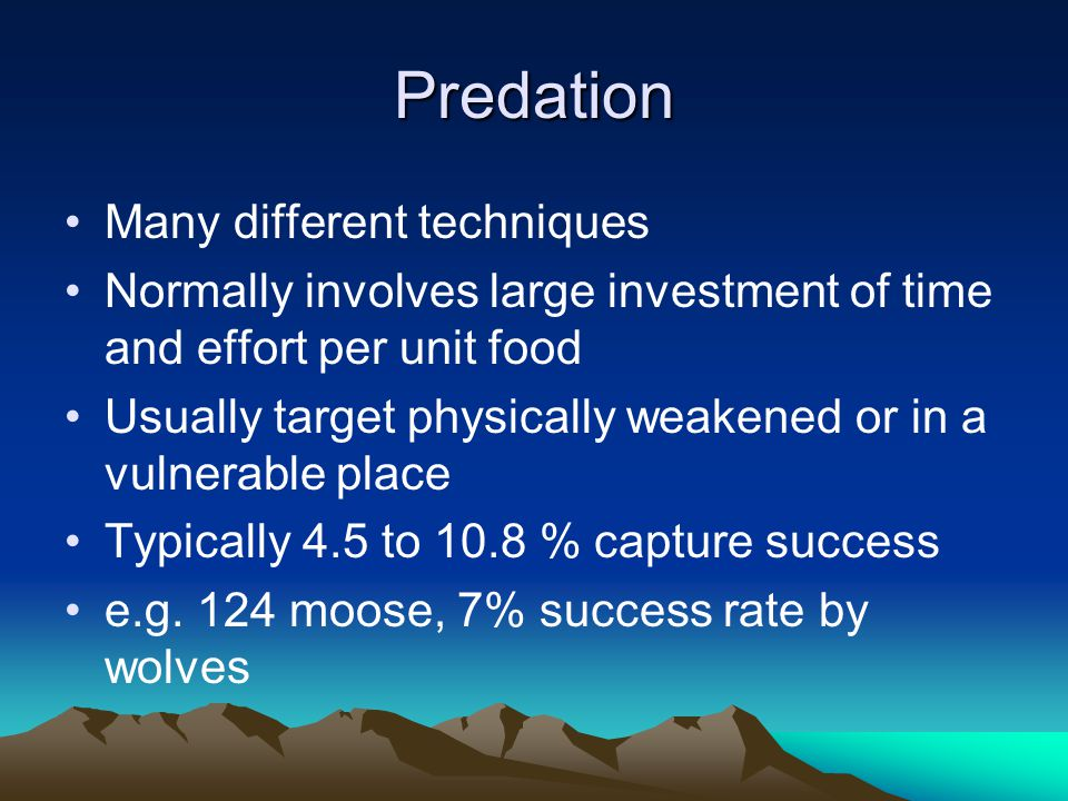 Predation Many different techniques Normally involves large investment of time and effort per unit food Usually target physically weakened or in a vulnerable place Typically 4.5 to 10.8 % capture success e.g.