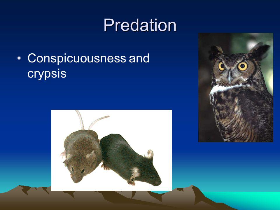 Predation Prey change behavior in absence of predators