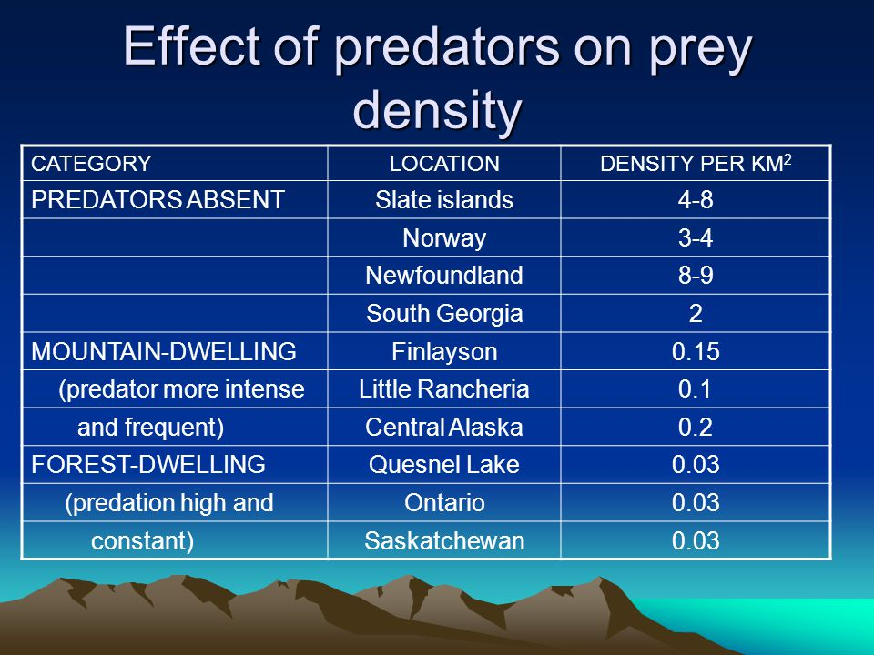 Effect of predators on prey density CATEGORYLOCATIONDENSITY PER KM 2 PREDATORS ABSENTSlate islands4-8 Norway3-4 Newfoundland8-9 South Georgia2 MOUNTAI