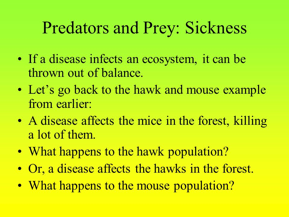 Predators and Prey: Sickness If a disease infects an ecosystem, it can be thrown out of balance. Let's go back to the hawk and mouse example from earl