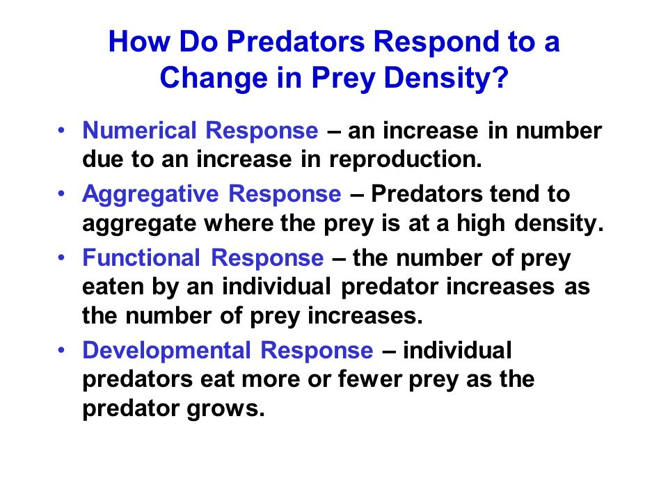 How Do Predators Respond to a Change in Prey Density.