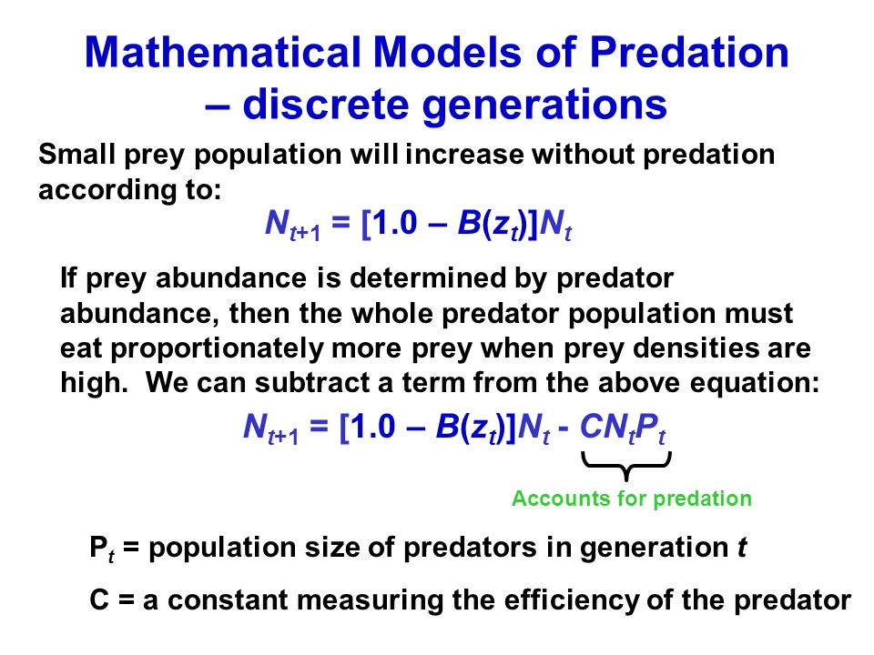 Mathematical Models of Predation – discrete generations Small prey population will increase without predation according to: N t+1 = [1.0 – B(z t )]N t If prey abundance is determined by predator abundance, then the whole predator population must eat proportionately more prey when prey densities are high.