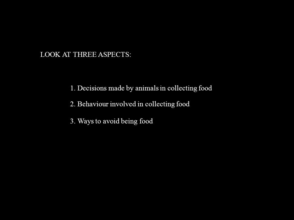 LOOK AT THREE ASPECTS: 1. Decisions made by animals in collecting food 2.