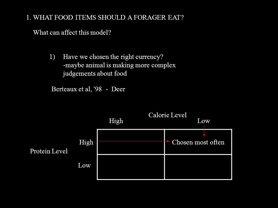 1. WHAT FOOD ITEMS SHOULD A FORAGER EAT. What can affect this model.