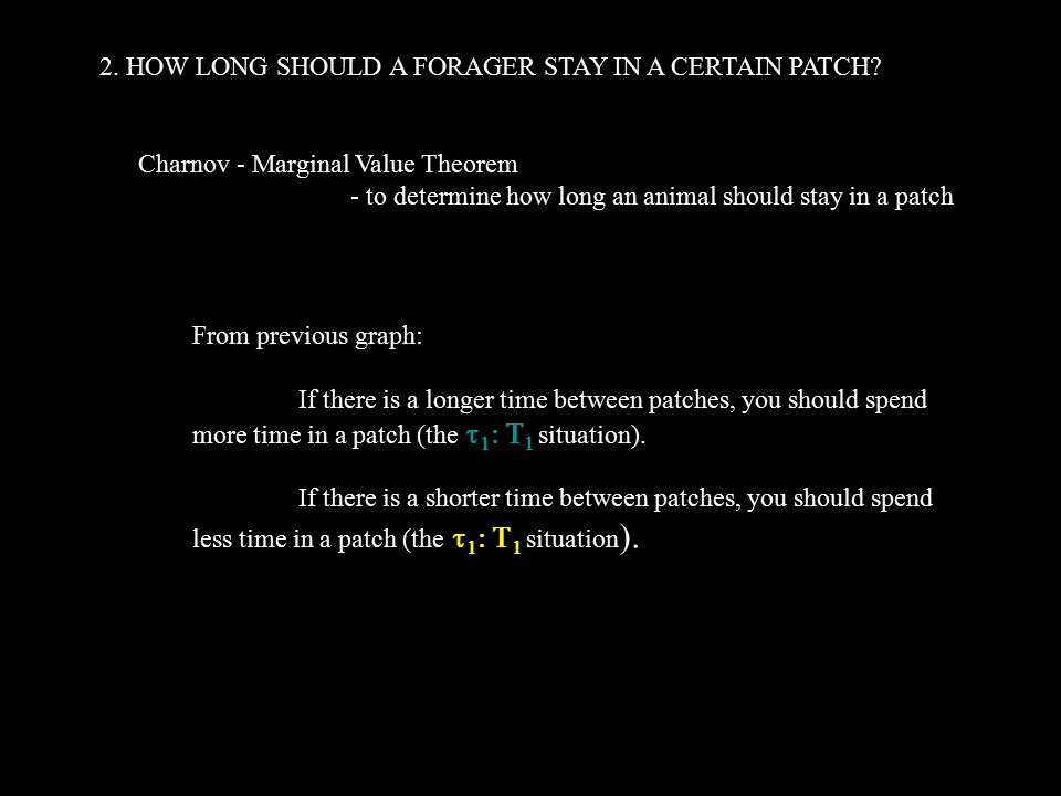 2. HOW LONG SHOULD A FORAGER STAY IN A CERTAIN PATCH.