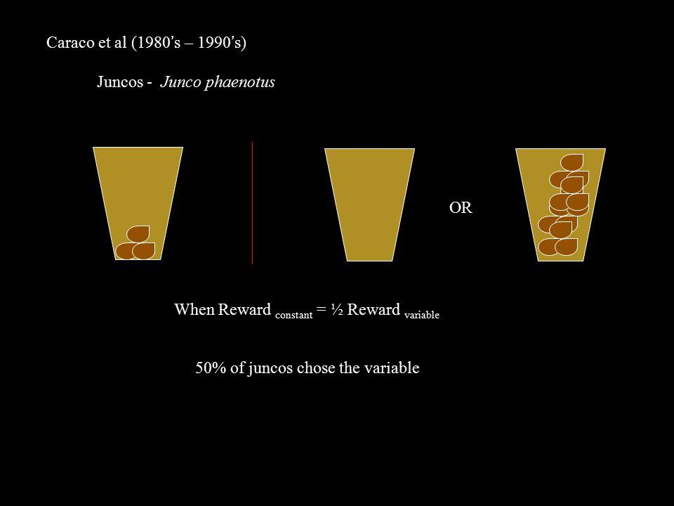 Caraco et al (1980's – 1990's) Juncos - Junco phaenotus OR When Reward constant = ½ Reward variable 50% of juncos chose the variable