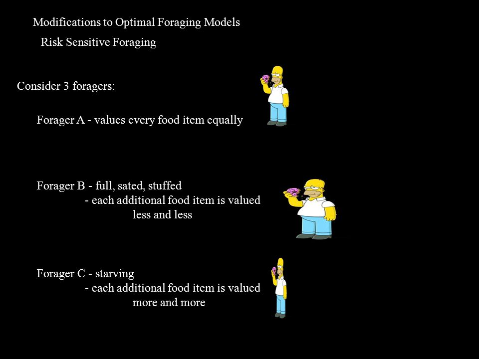 Modifications to Optimal Foraging Models Risk Sensitive Foraging Consider 3 foragers: Forager A - values every food item equally Forager B - full, sated, stuffed - each additional food item is valued less and less Forager C - starving - each additional food item is valued more and more