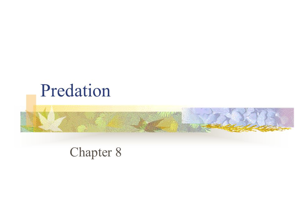 Predation Chapter 8