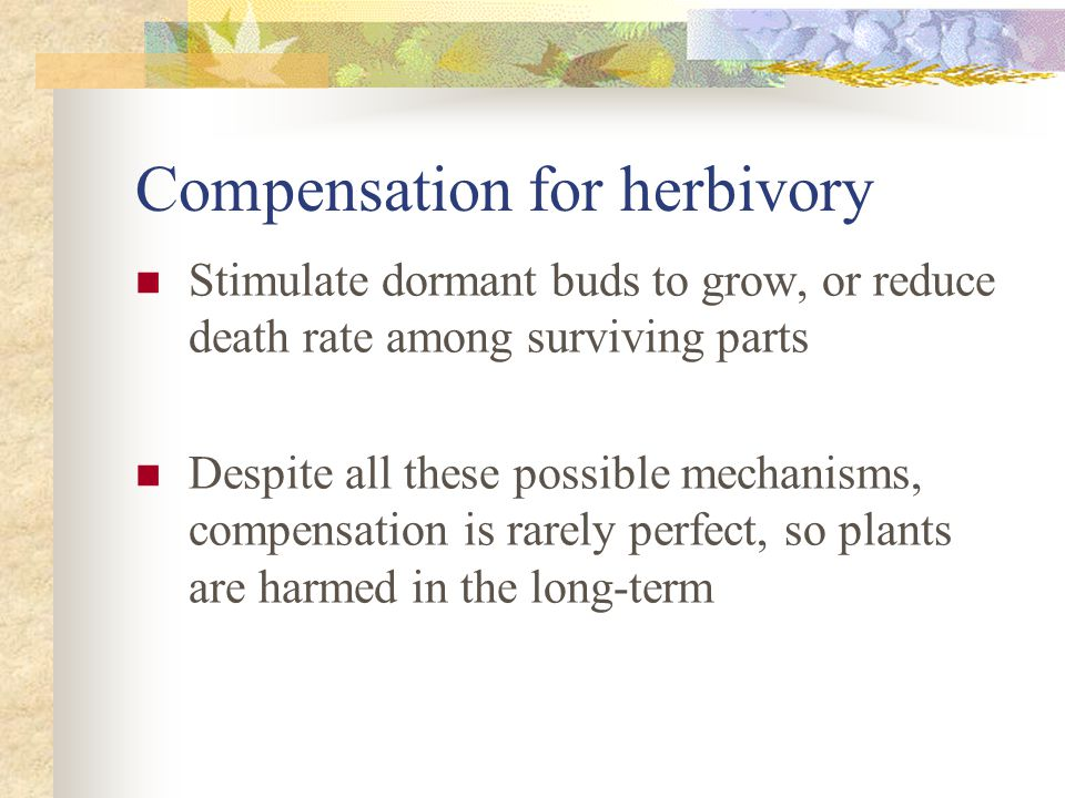 Compensation for herbivory Stimulate dormant buds to grow, or reduce death rate among surviving parts Despite all these possible mechanisms, compensation is rarely perfect, so plants are harmed in the long-term