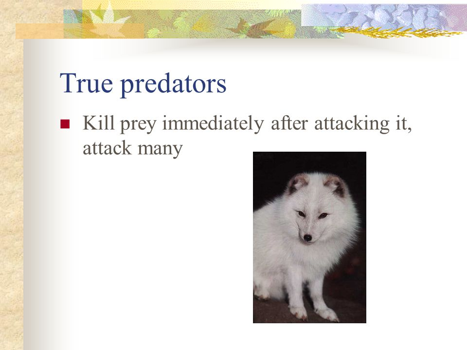 Grazers Attack many prey, but kill only part of each individual