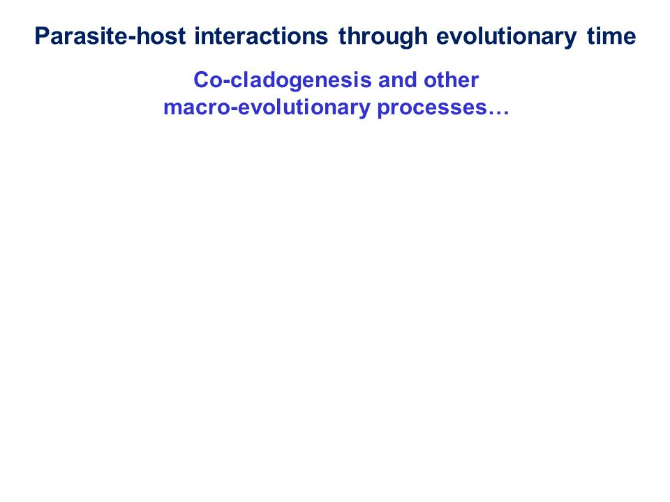Co-cladogenesis and other macro-evolutionary processes… Parasite-host interactions through evolutionary time