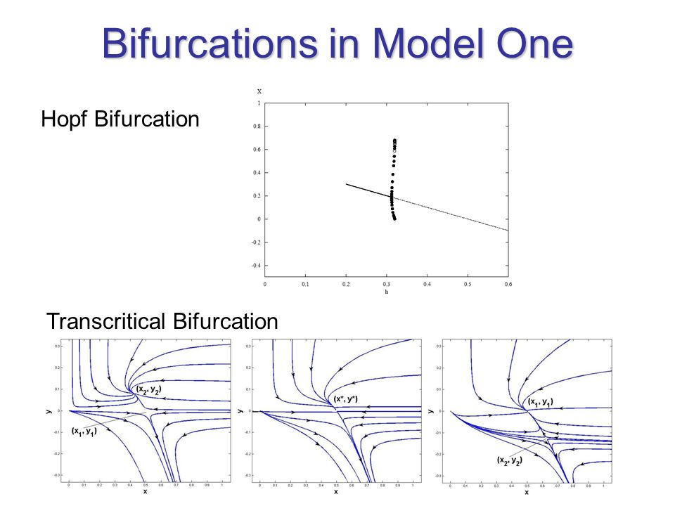 Bifurcations in Model One Hopf Bifurcation Transcritical Bifurcation