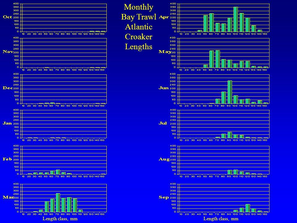 Monthly Bay Trawl Atlantic Croaker Lengths Length class, mm