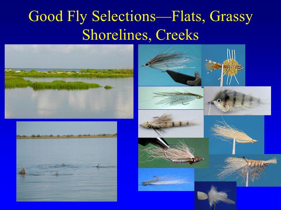Good Fly Selections—Flats, Grassy Shorelines, Creeks