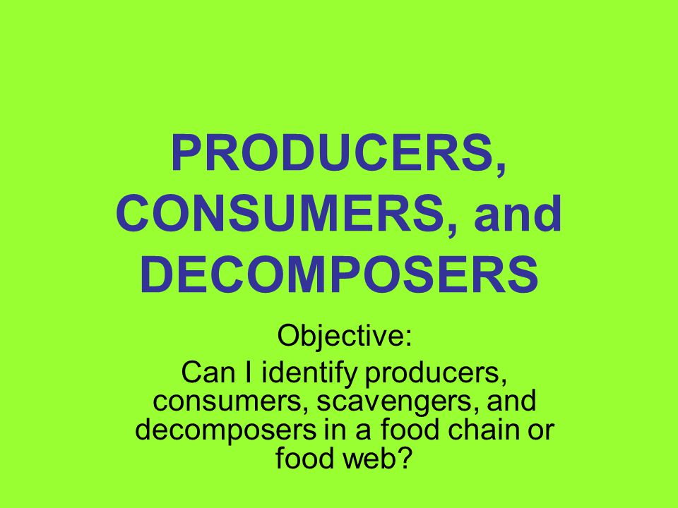 PRODUCERS, CONSUMERS, and DECOMPOSERS Objective: Can I identify producers, consumers, scavengers, and decomposers in a food chain or food web