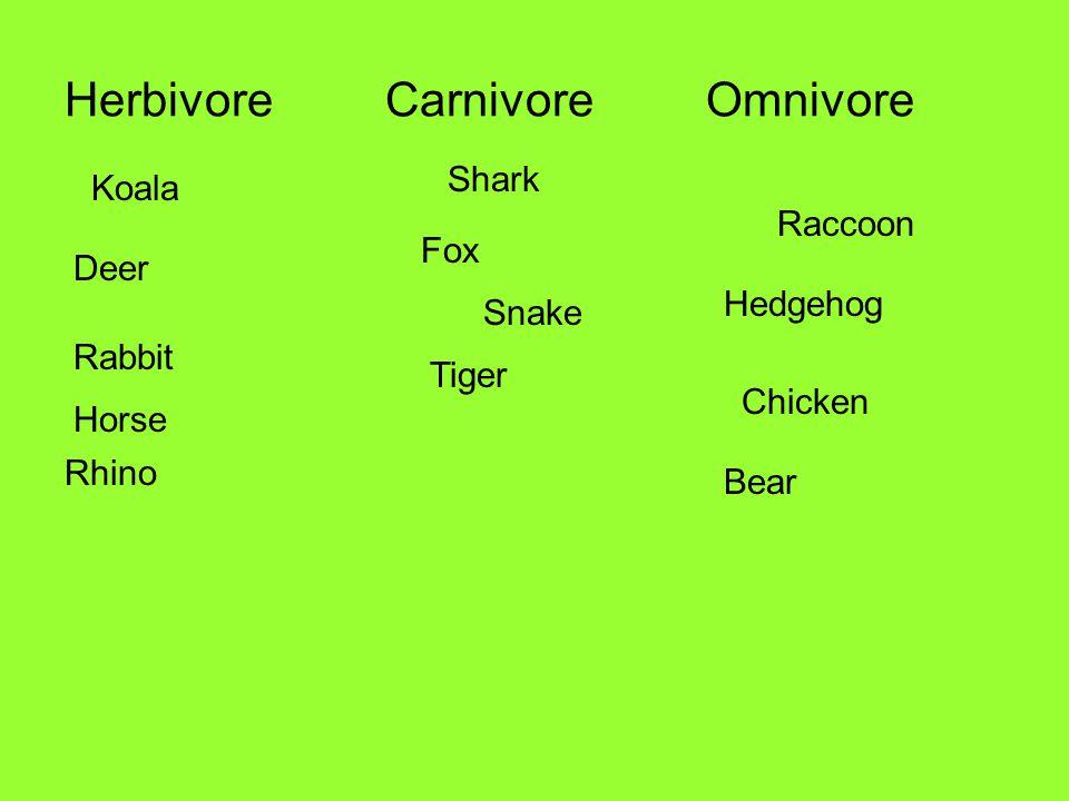 HerbivoreCarnivoreOmnivore Shark Rhino Hedgehog Bear Koala Raccoon Snake Rabbit Chicken Tiger Fox Horse Deer