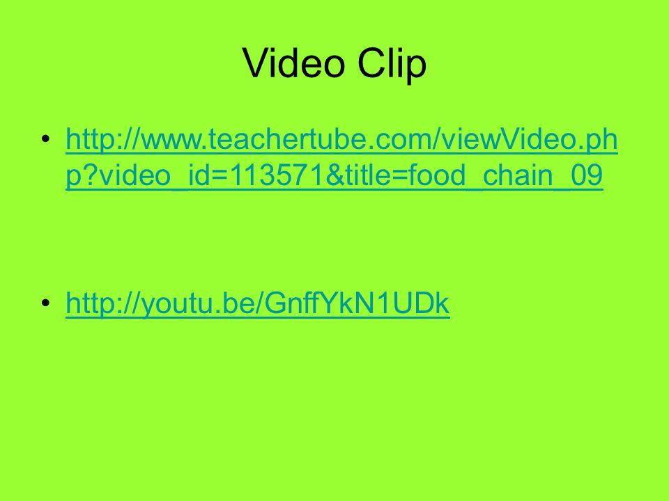 Video Clip http://www.teachertube.com/viewVideo.ph p video_id=113571&title=food_chain_09http://www.teachertube.com/viewVideo.ph p video_id=113571&title=food_chain_09 http://youtu.be/GnffYkN1UDk